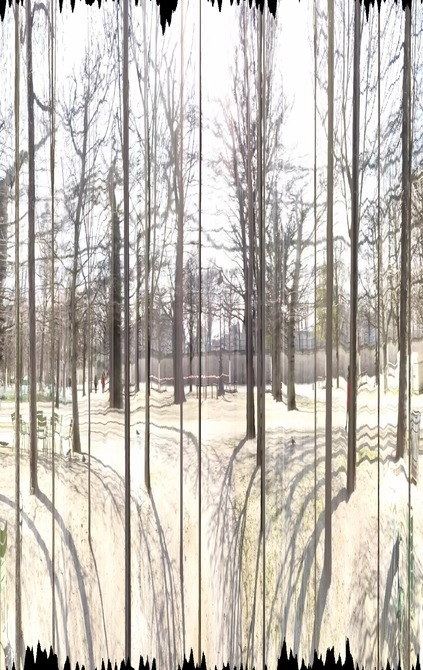 Perspective studies II. - Seeing the wood for the trees