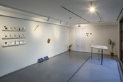 Hand-Antennas: Protocols from Extrasensory Aesthetics, exhibition view - thumbnail
