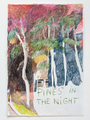 Pines in the night - thumbnail