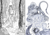 'Forest fairy' and 'Allstar' variant cover - thumbnail